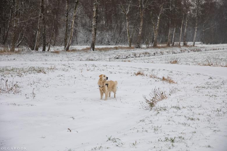 Landschapfotografie_OlgaRook-13