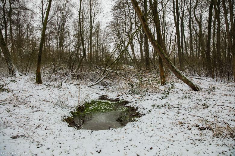 Landschapfotografie_OlgaRook-14