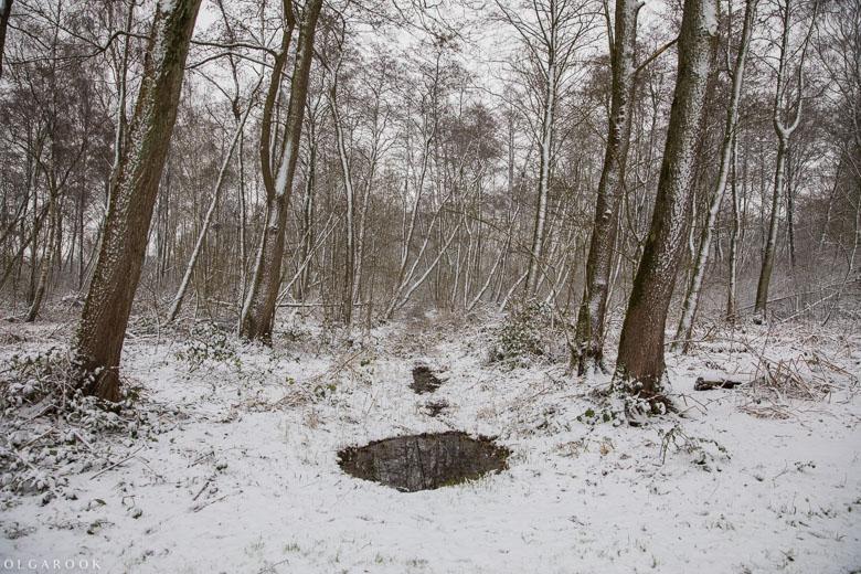 Landschapfotografie_OlgaRook-16