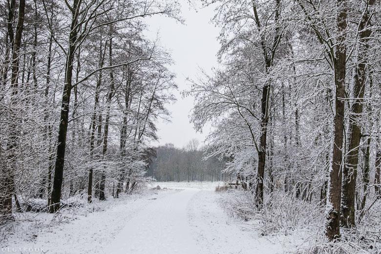 Landschapfotografie_OlgaRook-17