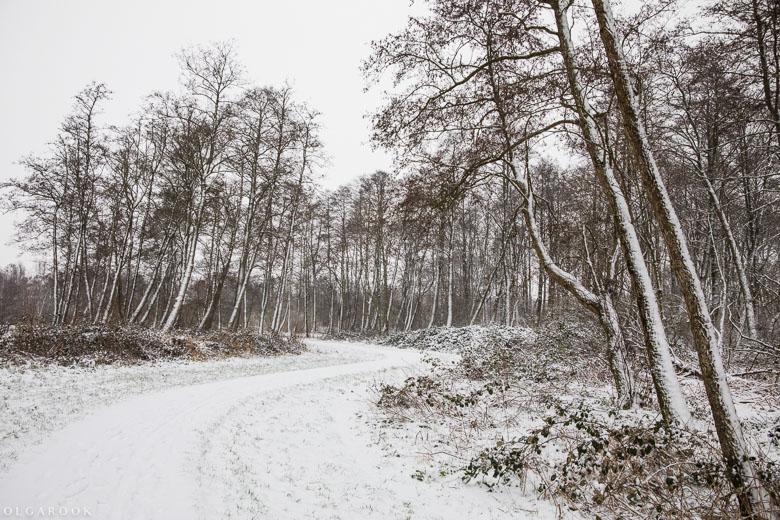 Landschapfotografie_OlgaRook-18