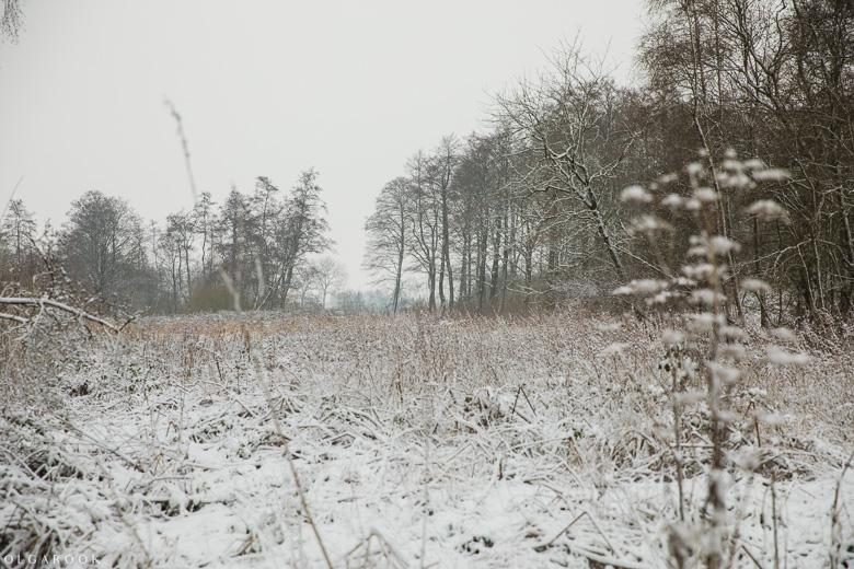 Landschapfotografie_OlgaRook-19
