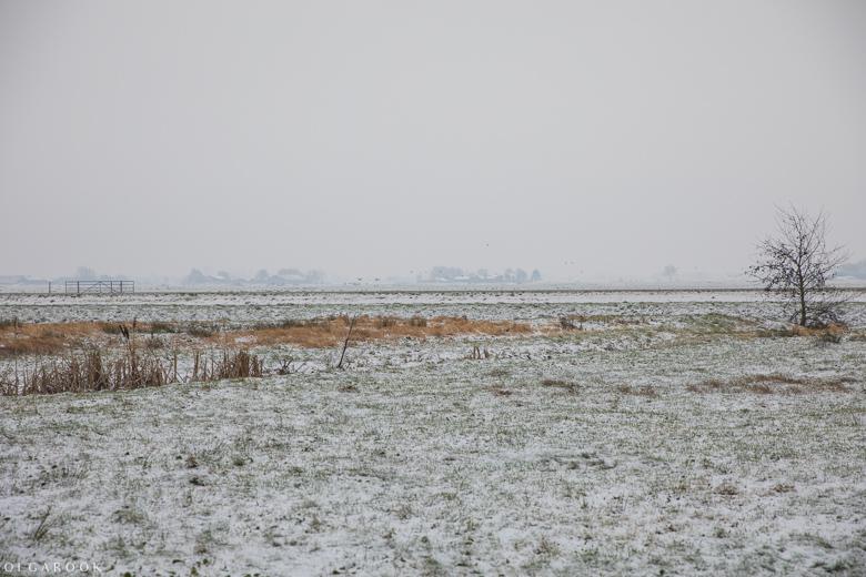 Landschapfotografie_OlgaRook-22