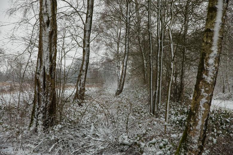 Landschapfotografie_OlgaRook-23