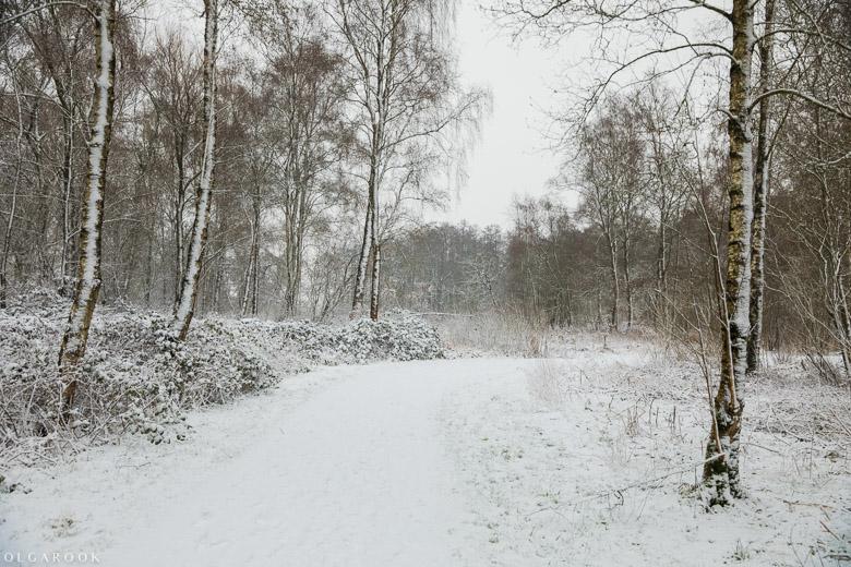 Landschapfotografie_OlgaRook-24