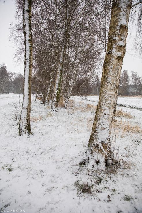 Landschapfotografie_OlgaRook-4