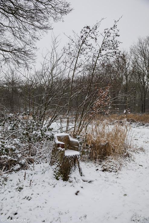 Landschapfotografie_OlgaRook-9