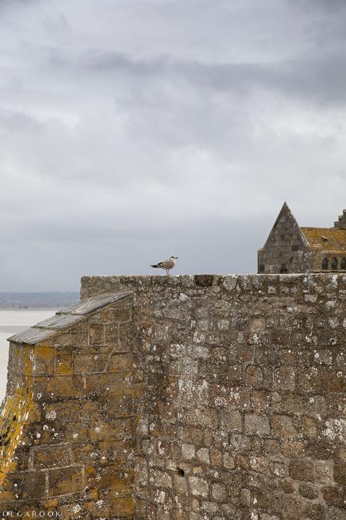 Mont-Saint-Michel_OlgaRook-25