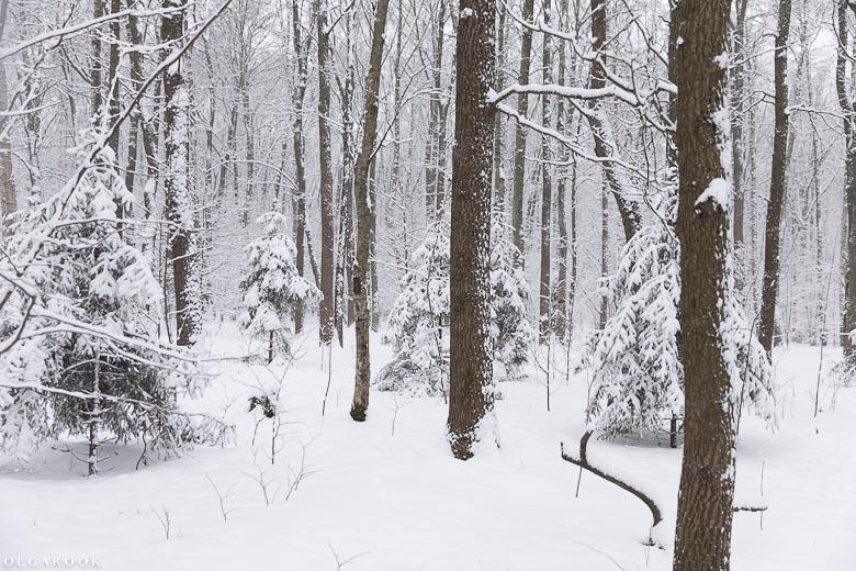 russische-winter-14