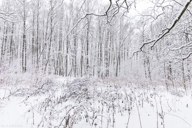 russische-winter-5